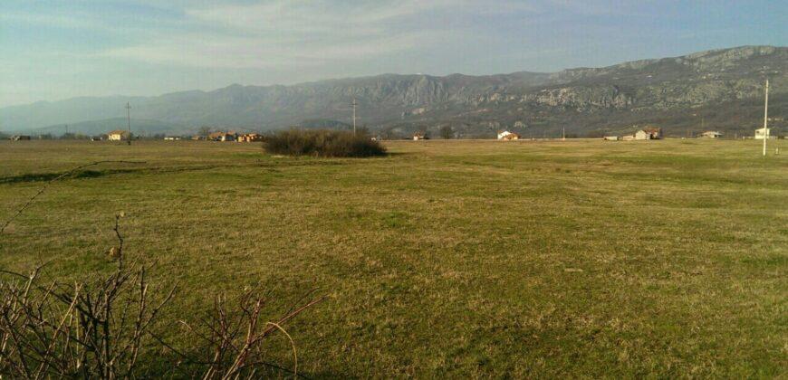 Podgorica – Land in Danilovgrad